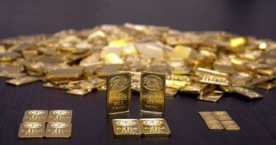 Altın yükselişine 2020'de devam edebilir